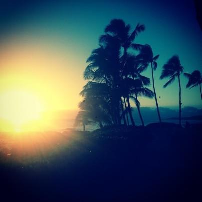 @joejonas: Paradise.