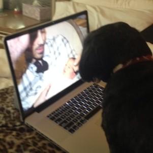 @denisejonas: Charlie the dog joejonas gave my sweet Father watching baby Alena with Uncle joejonas