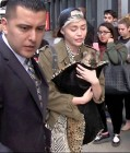Miley Cyrus Cries while Clutching her Tiny Pooch in NYC