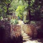 @blahblahblanda: I'm moving to Mexico. 👍💜