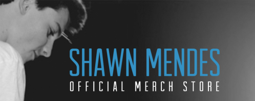 shawn mendes merch