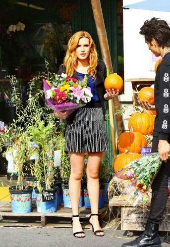 bella pumpkin